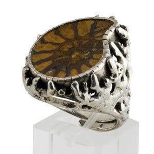 Ammonite fossile bijoux
